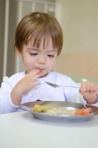 3. Alimentação