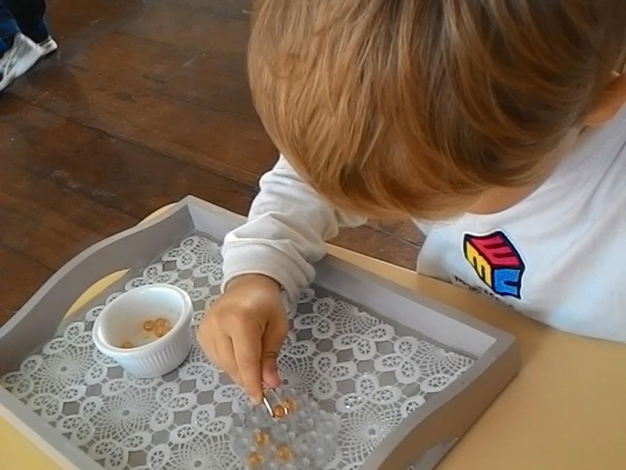 Infantile – Transpor com Pinça